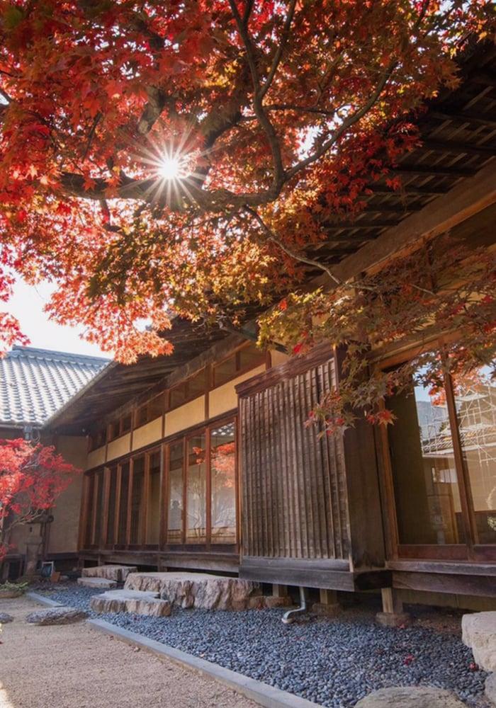 田中本家の秋の写真